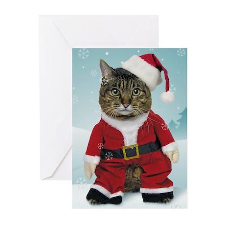 Santa Cat Christmas Cards (Pk of 10