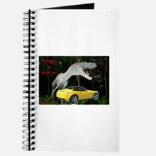 SATURN SKY Journal