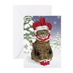 Jester Cat Christmas Cards (Pk of 10)