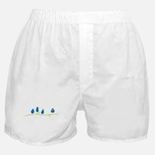 BLUEBIRDS ON A TWIG Boxer Shorts