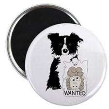 Sheep Wanted Magnet