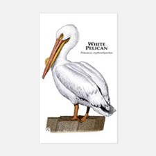 White Pelican Rectangle Decal