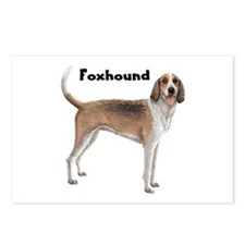 American Foxhound Postcards (Package of 8)
