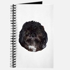 Black Shih Tzu Journal