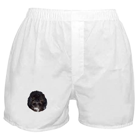 Black Shih Tzu Boxer Shorts