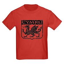 CYMRU Wales T