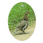 Ruffed Grouse Ornament (Oval)