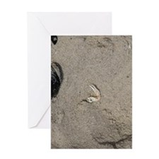 Remnants of the Sea Greeting Card