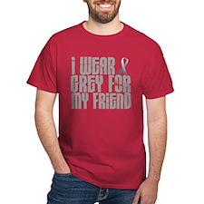 I Wear Grey For My Friend 16 T-Shirt