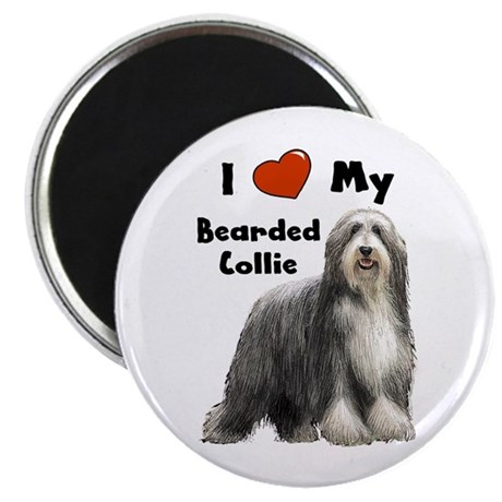 I Love My Bearded Collie Magnet