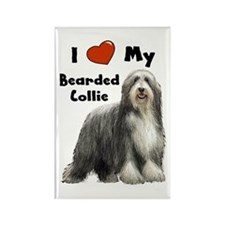 I Love My Bearded Collie Rectangle Magnet