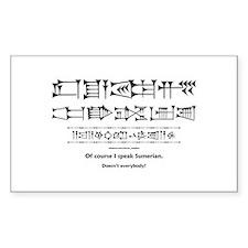 I Speak Sumerian Rectangle Decal