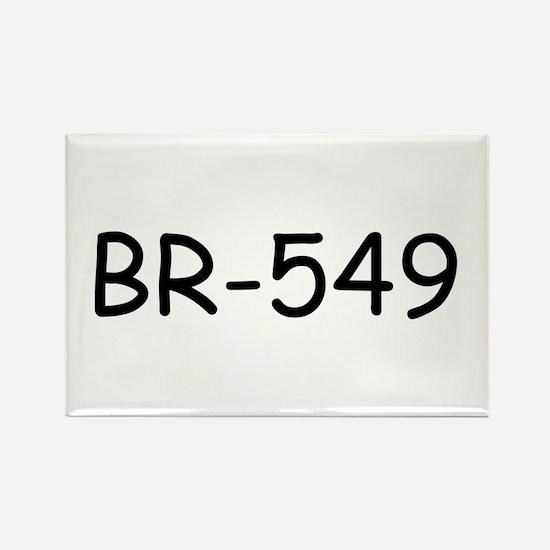 BR-549 Rectangle Magnet