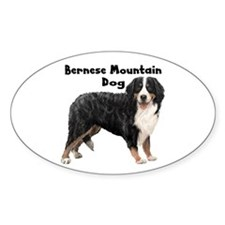 Bernese Mountain Dog Oval Decal