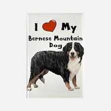 I Love My Bernese Mtn Dog Rectangle Magnet