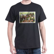 Ozarks Arkansas T-Shirt