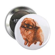 "Pomeranian Chocolate 2.25"" Button"