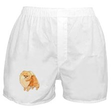 Pomeranian Fullbody Watercolor Boxer Shorts