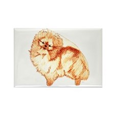 Pom Fullbody Color Rectangle Magnet