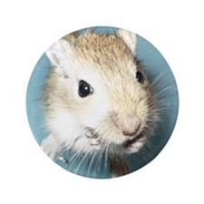 "Gerbil Close Up 3.5"" button"