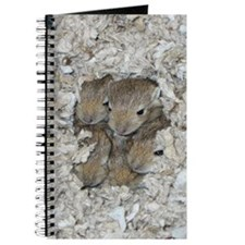 Gerbil pup journal
