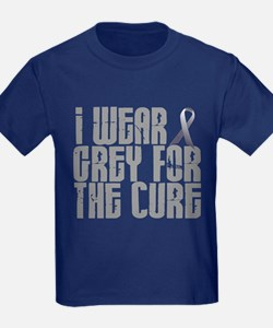 I Wear Grey For The Cure 16 T