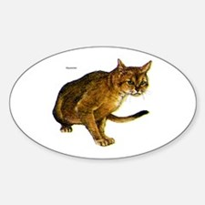 Abyssinian Cat Oval Decal