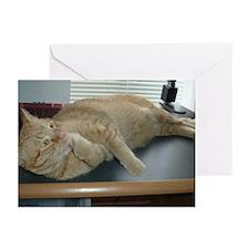 Orange Tabby Kitty Cat Greeting Cards (Pk of 10)