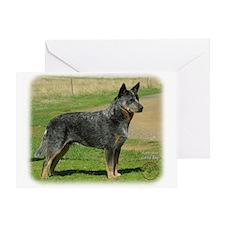 Australian Cattle Dog 9F060D-06 Greeting Card