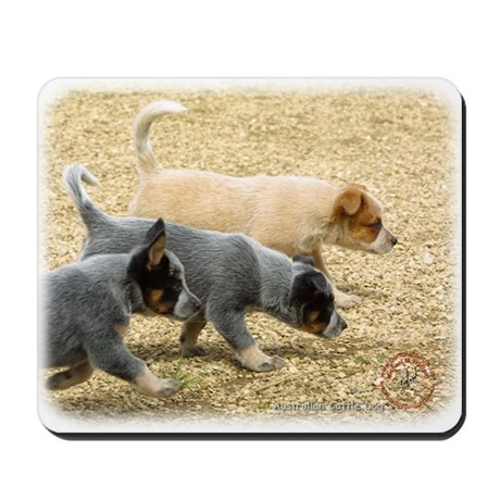Australian Cattle Dog 8T57D-18 Mousepad