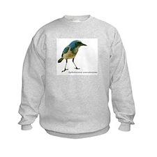 Florida Scrub Jay Sweatshirt