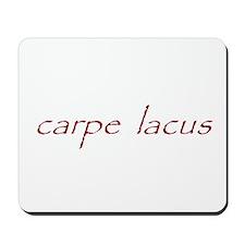 carpe lacus - MAROON Mousepad