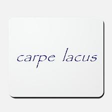 carpe lacus - NAVY Mousepad