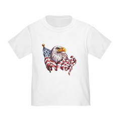 Eagle & Old Glory T