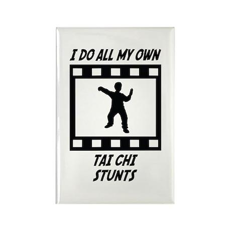 Tai Chi Stunts Rectangle Magnet (10 pack)