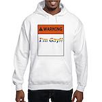 Warning I'm Gay Hooded Sweatshirt