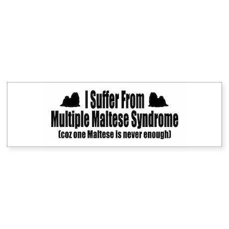 Maltese Sticker (Bumper 50 pk)