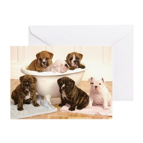 Bulldog Greeting Cards (Pk of 20)