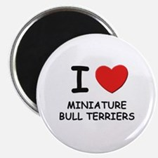 I love MINIATURE BULL TERRIERS Magnet