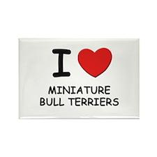 I love MINIATURE BULL TERRIERS Rectangle Magnet