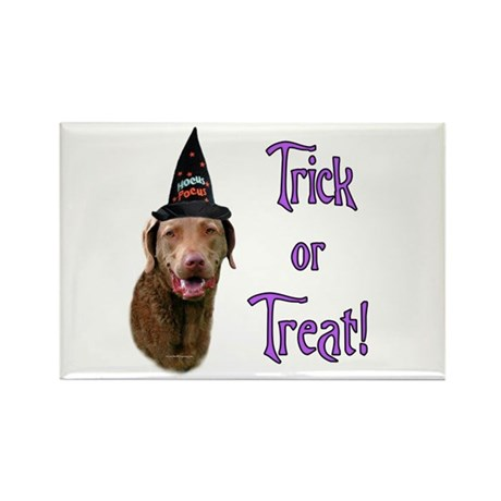 Chessie Trick Rectangle Magnet (10 pack)