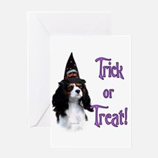 Cavalier Trick Greeting Card