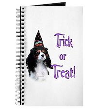 Cavalier Trick Journal