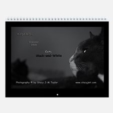 Black-and-White Cat Wall Calendar 2009