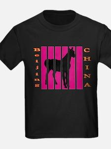 Beijing China Black Horse T