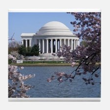 Cute Washington dc cherry blossom Tile Coaster