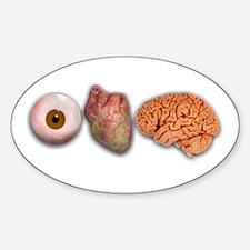 I Love Brains (Eye Heart Brai Oval Decal