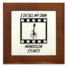 Mandolin Stunts Framed Tile