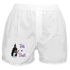 Swissy Trick Boxer Shorts