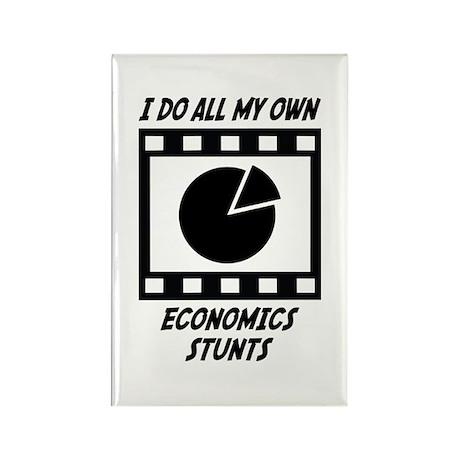 Economics Stunts Rectangle Magnet
